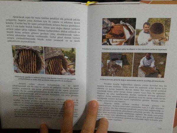 Modern Arıcılık Teknikleri Kitabı 13