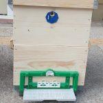plastik kovan tabanı (polen tuzaklı) 5