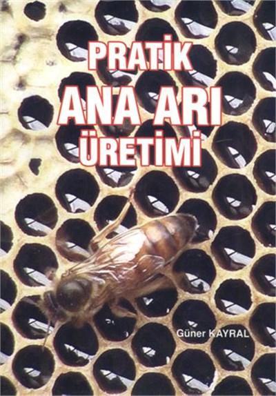Pratik Ana Arı Üretimi