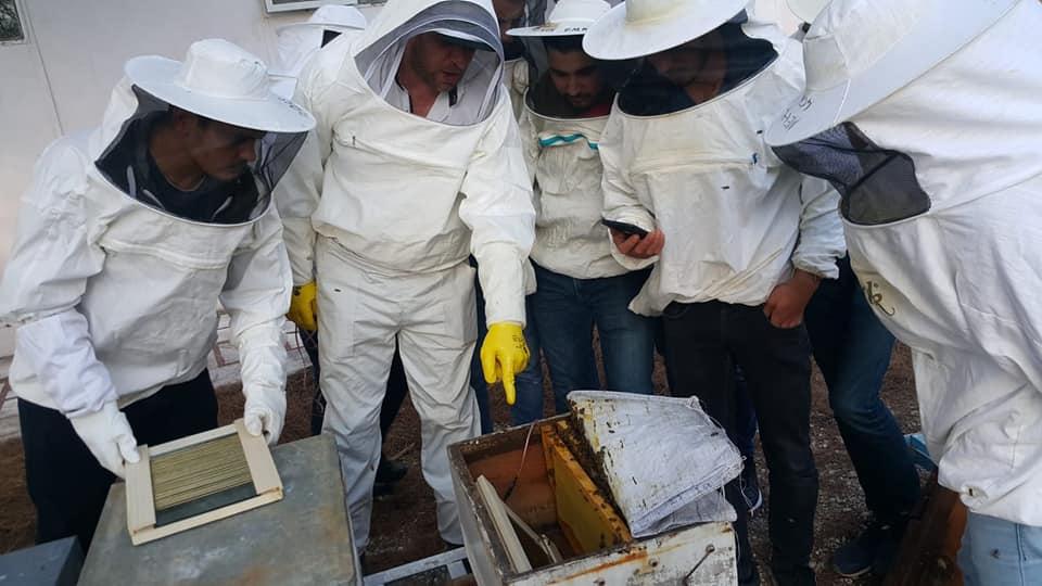 arı zehri aparatı 8