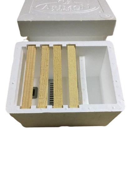 Ana Arı Çiftleştirme Kutusu (Strafor)