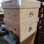 8 çerçeveli kovanlı arı