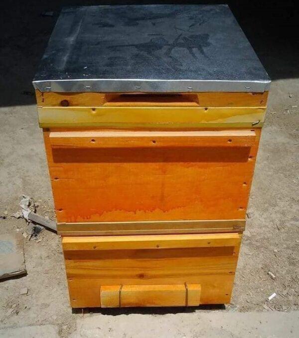 Arı Kovanı (Ağaç Taban) Çerçeveli