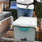 paket arı taşıma kutusu 1