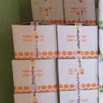 muğla petek fondan arı keki (20 kg) koli